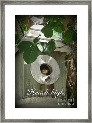 Reach High Framed Print