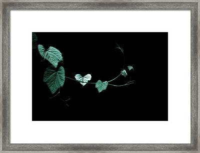 Reach Out And Touch Me Framed Print