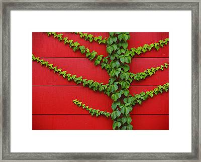 Reach Out Framed Print by Skip Hunt