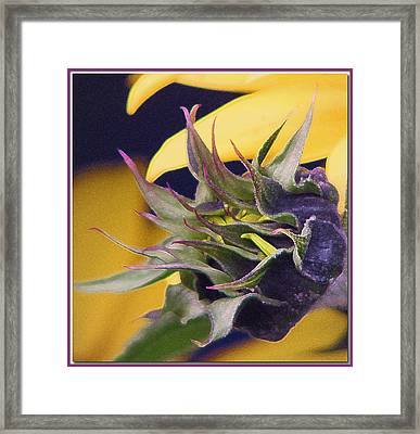Reaching Framed Print by Chris Anderson