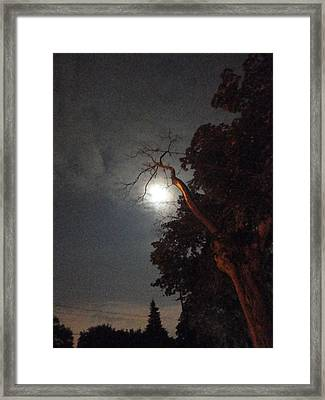 Reaching For The Moon Framed Print by Guy Ricketts