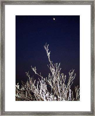 Reaching For The Moon Framed Print by Mike Podhorzer