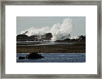 Framed Print featuring the photograph Reaching For The Sky by Dave Files