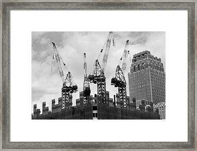 Reaching High Framed Print
