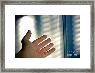 Reaching Out Framed Print by Amy Cicconi