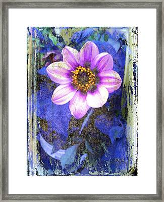 Reaching Out Framed Print by Barbara R MacPhail