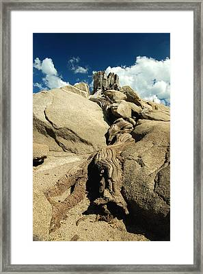 Framed Print featuring the photograph Reaching Toward Heaven by Tamyra Crossley