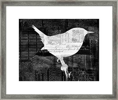 Reader Bird Framed Print by Georgia Fowler