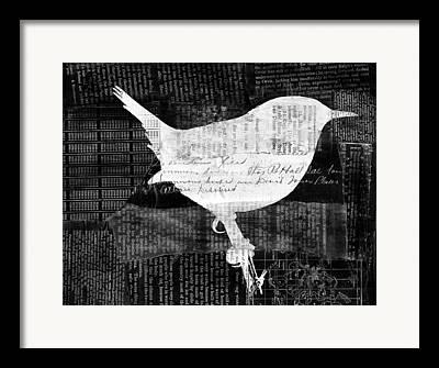 Wren Framed Prints