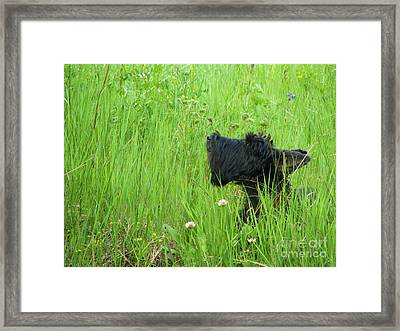Reading The Air Framed Print by Michele Penner