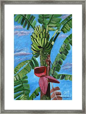 Ready For Harvest Framed Print by Laura Forde