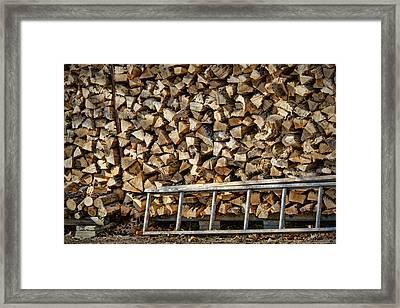 Ready For Winter #1 Framed Print