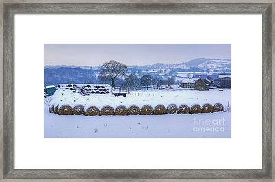 Ready For Winter Framed Print by David Birchall