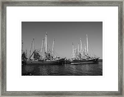 Ready To Go Out Framed Print by Barry Jones