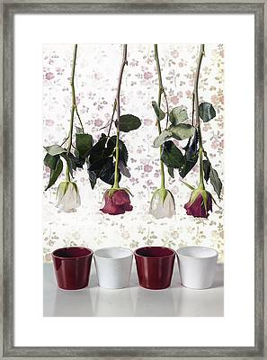 Ready To Plant Framed Print