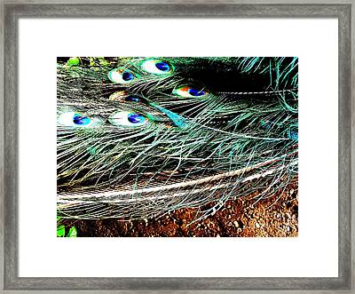 Framed Print featuring the photograph Realpeack by Vanessa Palomino