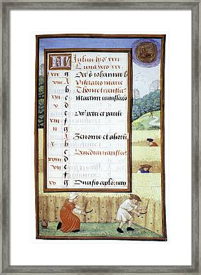 Reaping Corn In July Framed Print by Granger