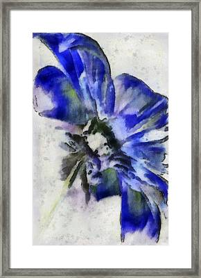 Rear View Framed Print by Jill Balsam