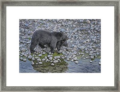 Framed Print featuring the photograph Reassurance by Gary Hall