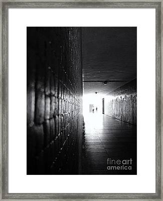 Rebirth Framed Print by Jose Elias - Sofia Pereira