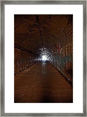 Rebirth Framed Print by Mark Alder