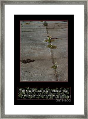 Reclaim No.13 Framed Print