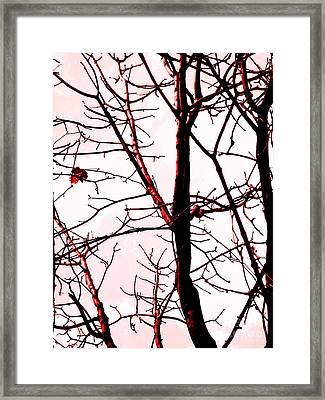 Reclaim The Night Framed Print by Robyn King