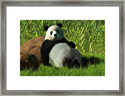 Reclining Panda Framed Print by Daniel Eskridge
