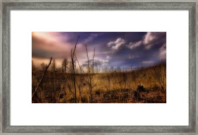 Framed Print featuring the photograph Recovery by Ellen Heaverlo