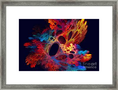 Red Algae Framed Print by Klara Acel