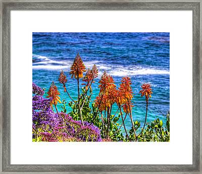 Framed Print featuring the photograph Red Aloe By The Pacific by Jim Carrell