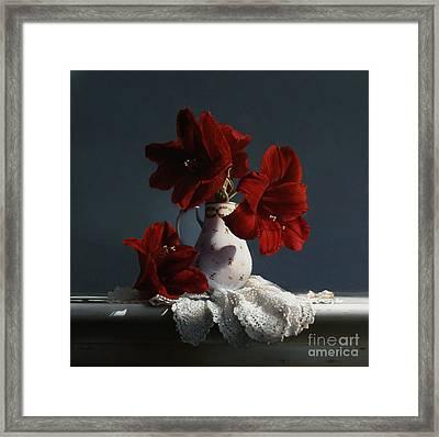 Red Amaryllis Flowers  Framed Print by Larry Preston