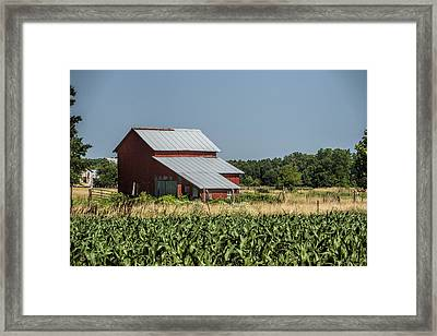 Red Amish Barn And Corn Fields Framed Print by Kathy Clark