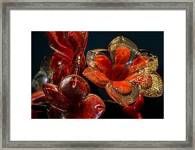 Framed Print featuring the photograph Red And Gold by Glenn DiPaola