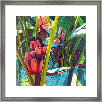Red And Green Framed Print by David Randall