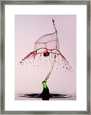 Red And Green Framed Print by Jaroslaw Blaminsky