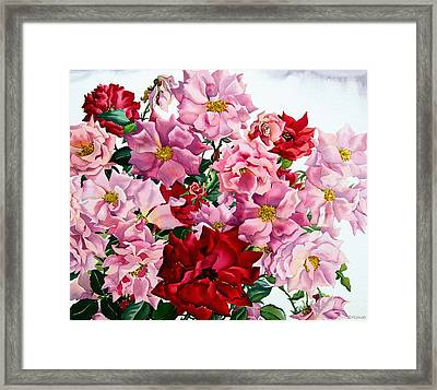 Red And Pink Roses Framed Print by Christopher Ryland