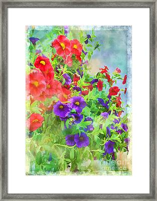 Red And Purple Calibrachoa - Digital Paint I Framed Print