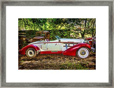 Red And White Auburn Framed Print by Garry Gay