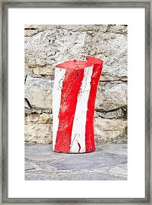 Red And White Log Framed Print