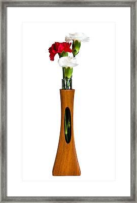 Red And White Spray Carnations In Teak Vase Framed Print by Steven Heap