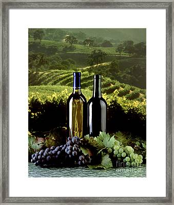 Red And White Wines Framed Print