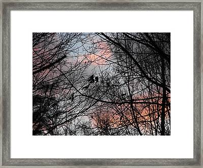 Red At Night Framed Print by Penny Homontowski