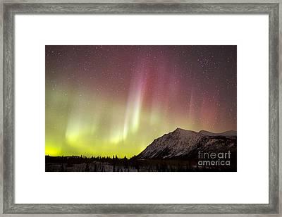 Red Aurora Borealis Over Carcross Framed Print by Joseph Bradley