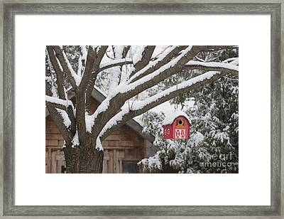 Red Barn Birdhouse On Tree In Winter Framed Print