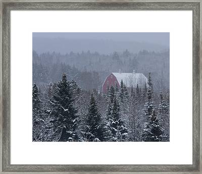 Red Barn In Maine Framed Print by Jack Zievis