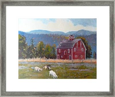 Red Barn In Montana Framed Print