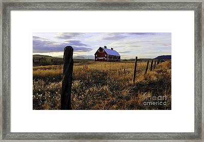 Red Barn In The Golden Field Framed Print