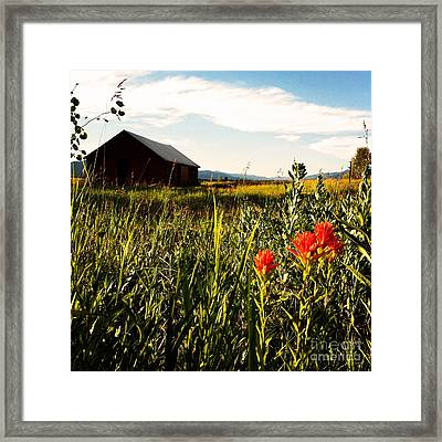 Framed Print featuring the photograph Red Barn by Meghan at FireBonnet Art
