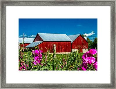 Red Barn On Riggsville Road Framed Print